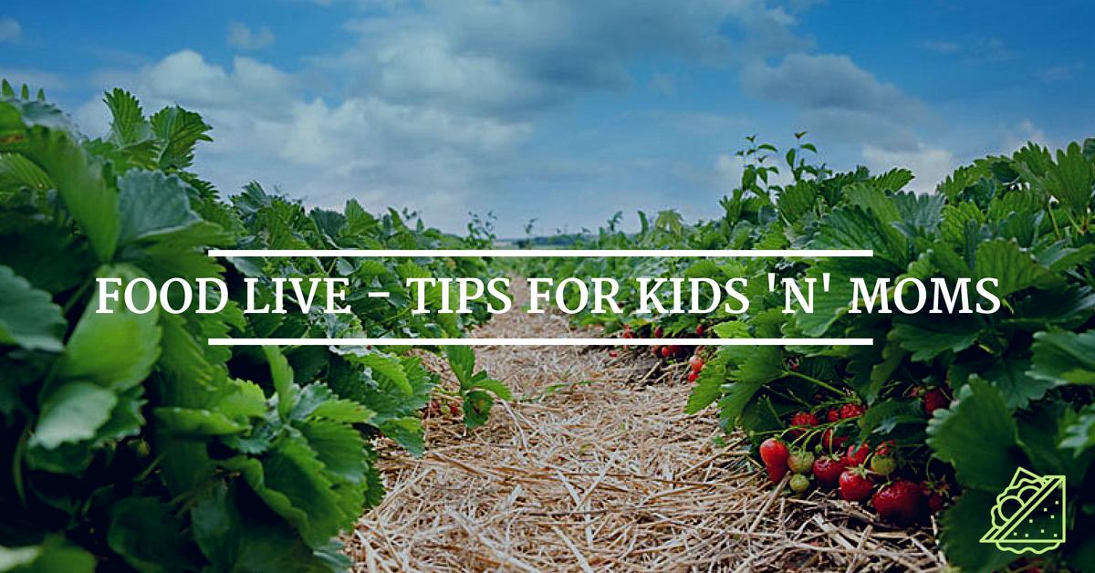 Bild FOOD LIVE - Tips for kids 'n' moms