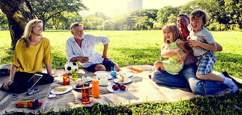 Bild My Day Reloaded Picknick im Grünen